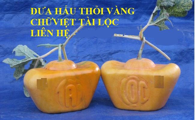 Dưa Hấu Thỏi Vàng Thư Pháp Chữ Việt