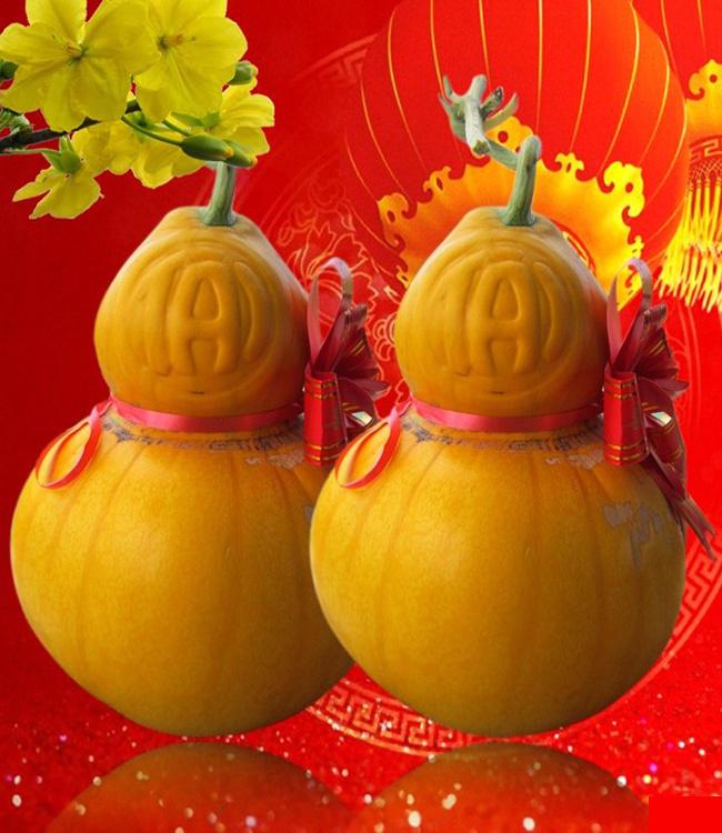 Dưa Hồ Lô Tài Lộc